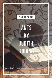 antsbyjudithhuang